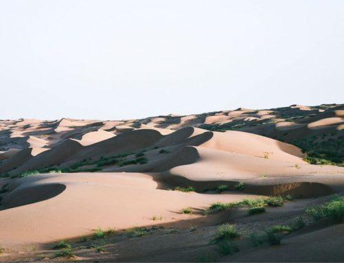 Die schönsten Orte in Oman